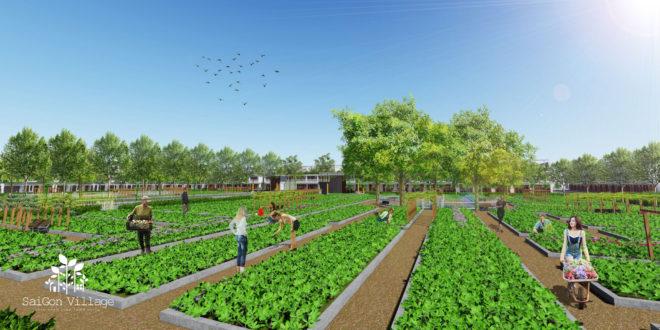 Dự án sài gòn village – thoải mãn cuộc sống xanh của cư dân